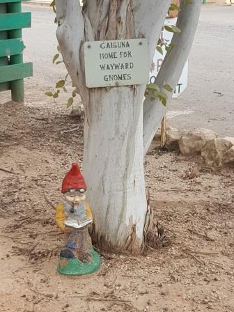 Home for Wayward Gnomes