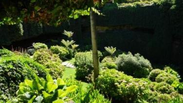 """Umpherston Sinkhole - """"Sunken Gardens"""""""