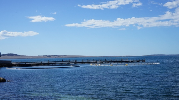 fish farms at Port Lincoln