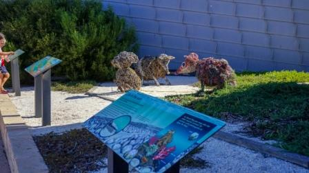 Sculptures by the Visitor Centre